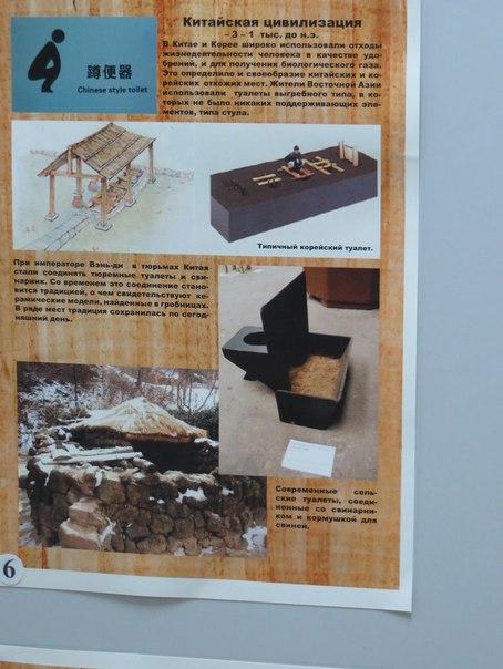Музей історії туалету (6)